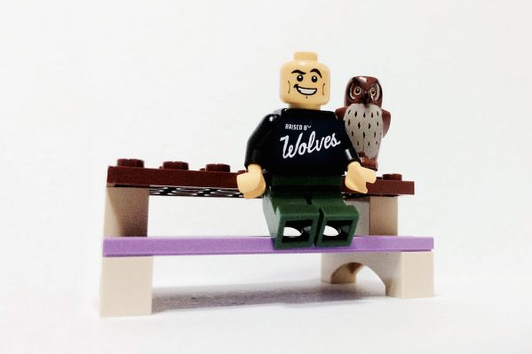 Raised By Wolves X LEGO