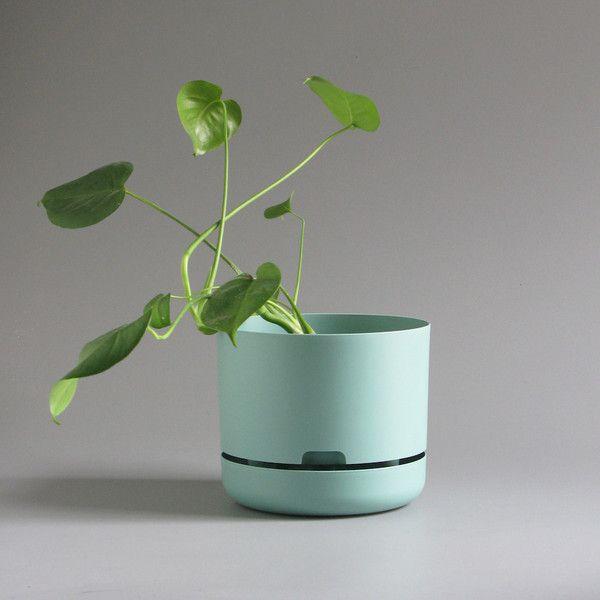 Mr Kitly x Decor Selfwatering Plant Pot