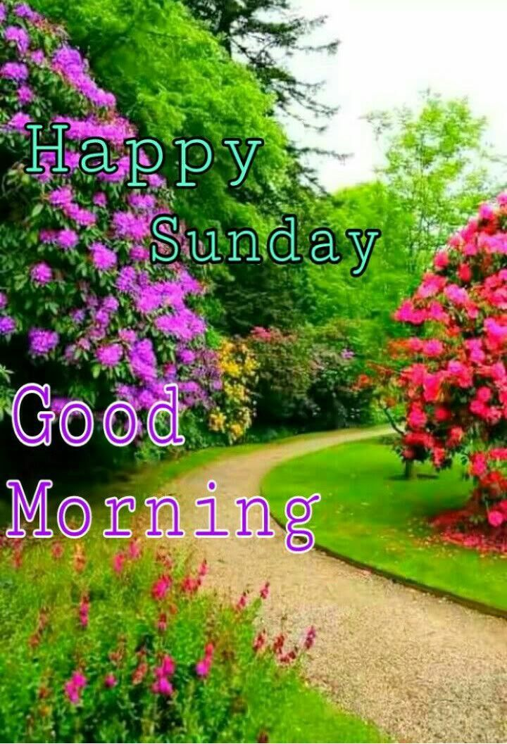 Pin By Lola H On Ravi Happy Sunday Quotes Good Morning Greetings Sunday Greetings