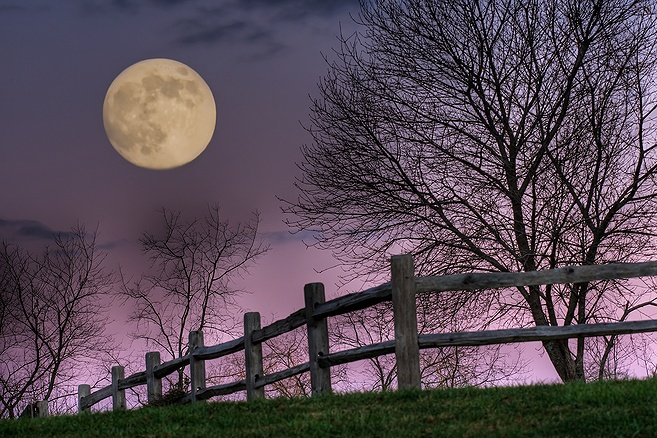 Love this. November Moon, by Jim Crotty. Taken in Hocking Hills, Ohio