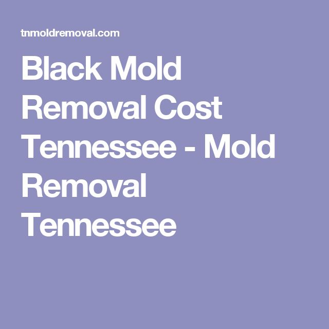 25 Best Ideas About Remove Black Mold On Pinterest
