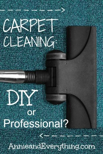 25 Best Ideas About Professional Carpet Cleaning On