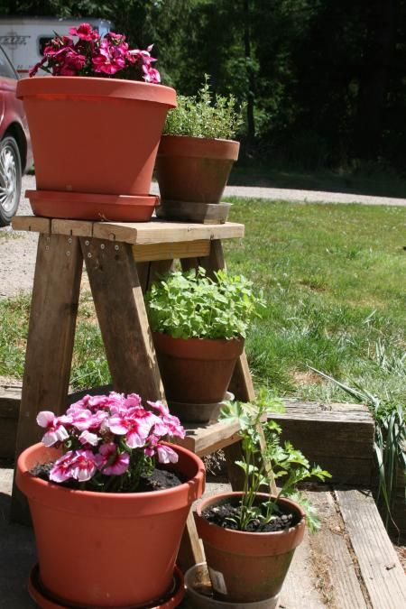 Cute Ladder Plant Stand Do It Yourself Home Projects