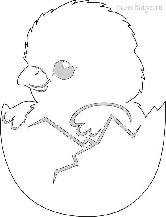 pasha-yajtso-vytynanka-tsyplenok.png (550×716)