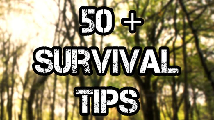 Awesome 50+ Wilderness Survival Tips!
