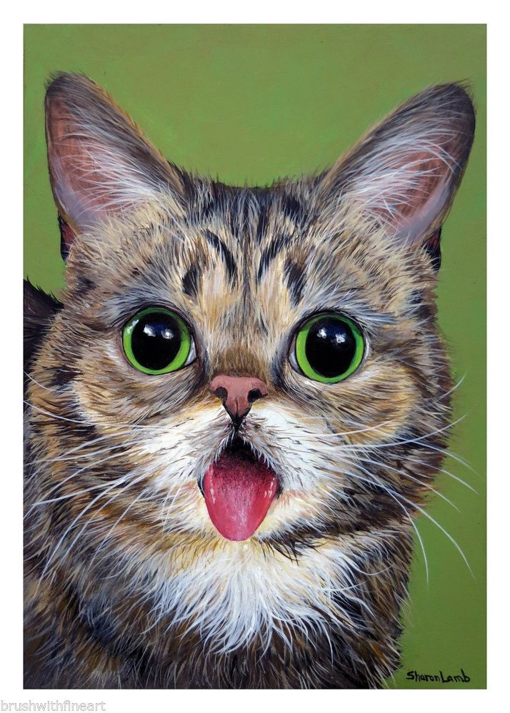 Lil Bub ACEO Print From Original Painting by Sharon Lamb 2.5 x 3.5
