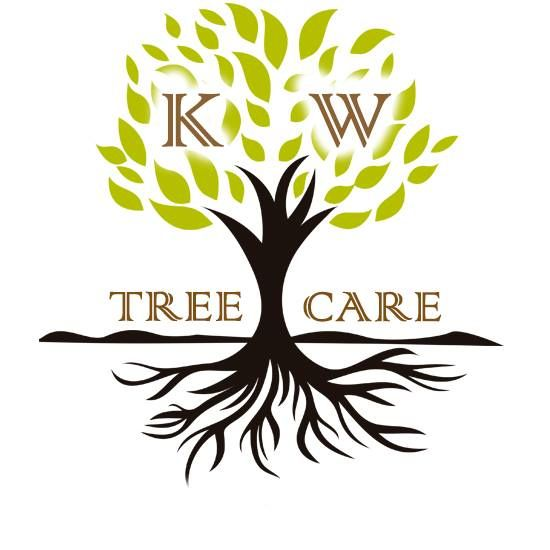 If you are looking for best Tree Surgeon in HODDESDON then your search is over at KW Tree Care. They strive to provide, professional, approachable and affordable tree care across all of Hertfordshire and North London.