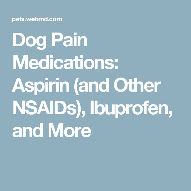 Dog Pain Medications: Aspirin (and Other NSAIDs), Ibuprofen, and More