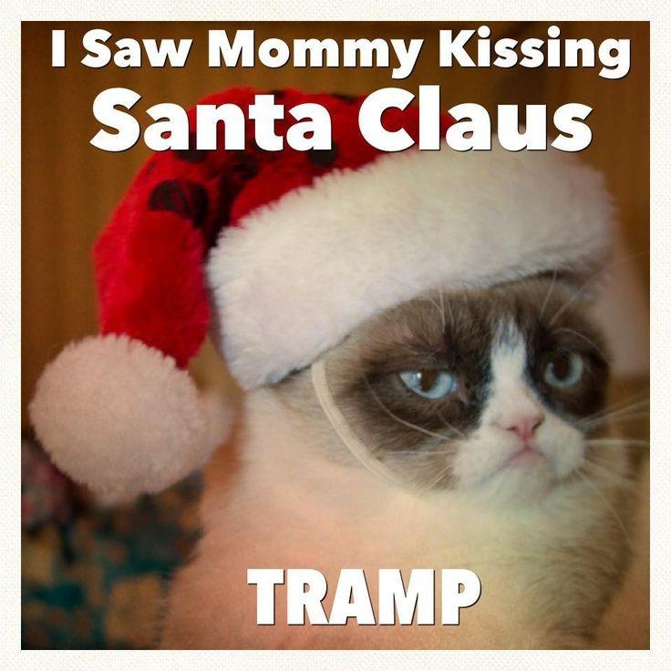grumpy cat and christmas | Tard the Grumpy Cat Christmas | Xmas