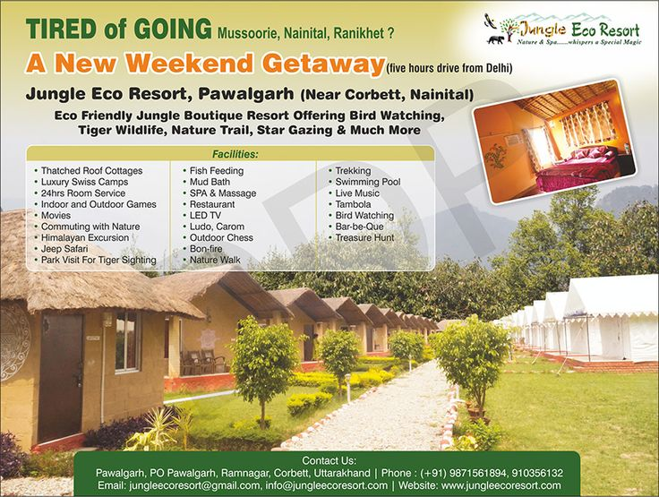 New Destination, New Resort to visit. Tiger Sighting and Birder's Paradise #JungleEcoResort #Resorts #JungleResort #WeekendGateway #Tiger