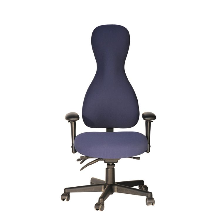 Exceptional Ergoprise Ergonomic Store   SomaForm   High Back Chair, $385.00 (http:// Photo Gallery