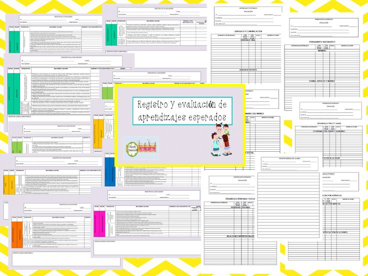 Registro y Evaluación de Aprendizajes Esperados |