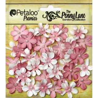 Пенни Лейн, Перл Мини-Ромашек .75 дюймов 40/PkgAntique Роза
