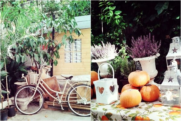 Federica&Co, Madrid. Secret pop up store in a garden  Madrid, guía express Madrid city guide