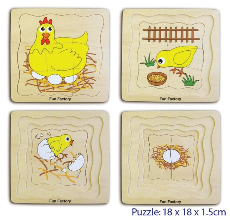 Wooden Chicken Life Cycle Layer Puzzle - $12 A clever challenging toy that illustrates the life cycle of a chicken.  Each layer builds upon the last from egg to Chicken  This is a deceptively difficult puzzle and a fantastic way to learn about the world around us.  The picture shows the four separate layers which fit one on top of the other Measures 18cm x 18cm 3yrs +