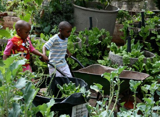 The Greenhouse Project promotes sustainable living in Johannesburg.  The project takes a holistic approach to integrating green building and design, efficient and renewable energy, recycling and organic farming into the Johannesburg's mindset. [Source: inhabitat.com] #pinyourcity