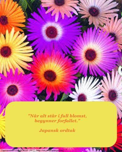 Japansk ordtak