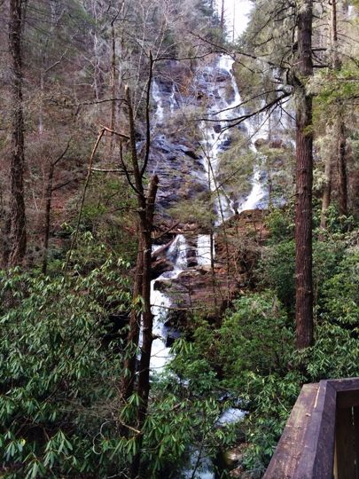 1000 images about smithgall woods state park on pinterest for Trout fishing in helen ga