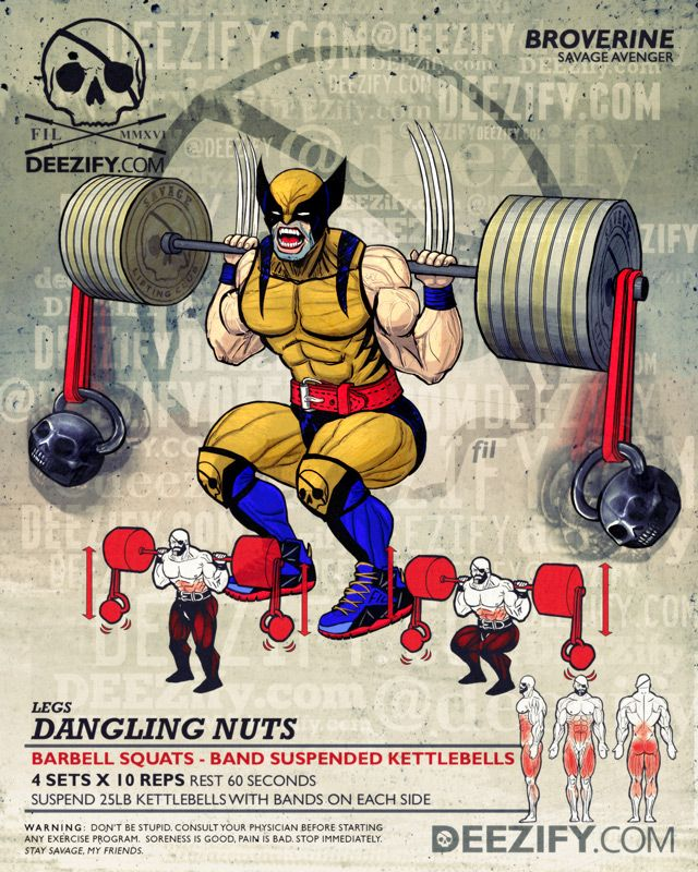 leg exercise: barbell squats band suspended weights - wolverine