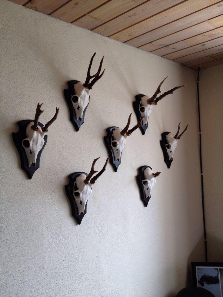 Trofæ vægen