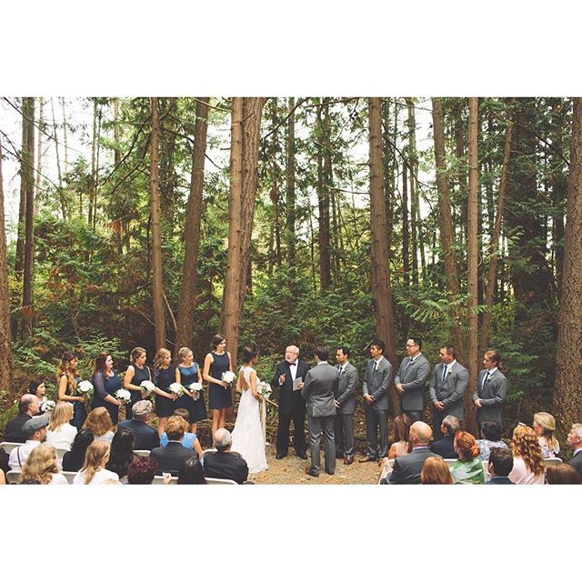 Indoor Wedding Ceremony Victoria Bc: 1000+ Images About Forest Space On Pinterest