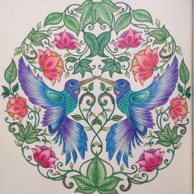 Best 25 Beija Flor Desenho Ideas On Pinterest