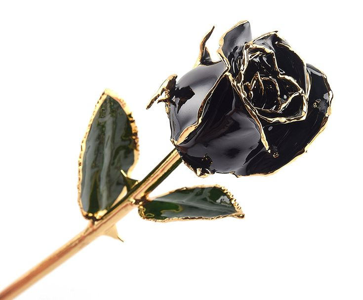Black rose gift a piece of art affiliate