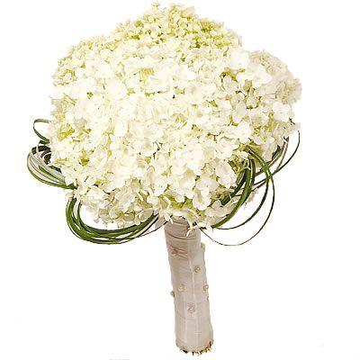 Букет невесты с бесплатной доставкой в Москве http://www.dostavka-tsvetov.com/buket-nevesty/buket-nevesty-iz-gortenziy