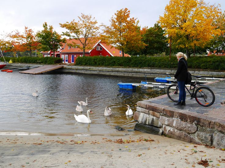 Kristiansand is perfect for biking, bring your bike on your next holiday in Southern Norway.  Photo: Elisabeth Høibo©Visit Southern Norway
