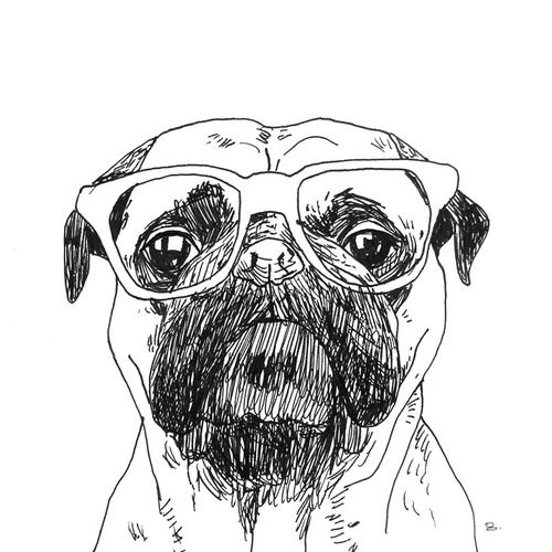 Pug Face Line Drawing : Best ideas about zee drawing glasses on pinterest