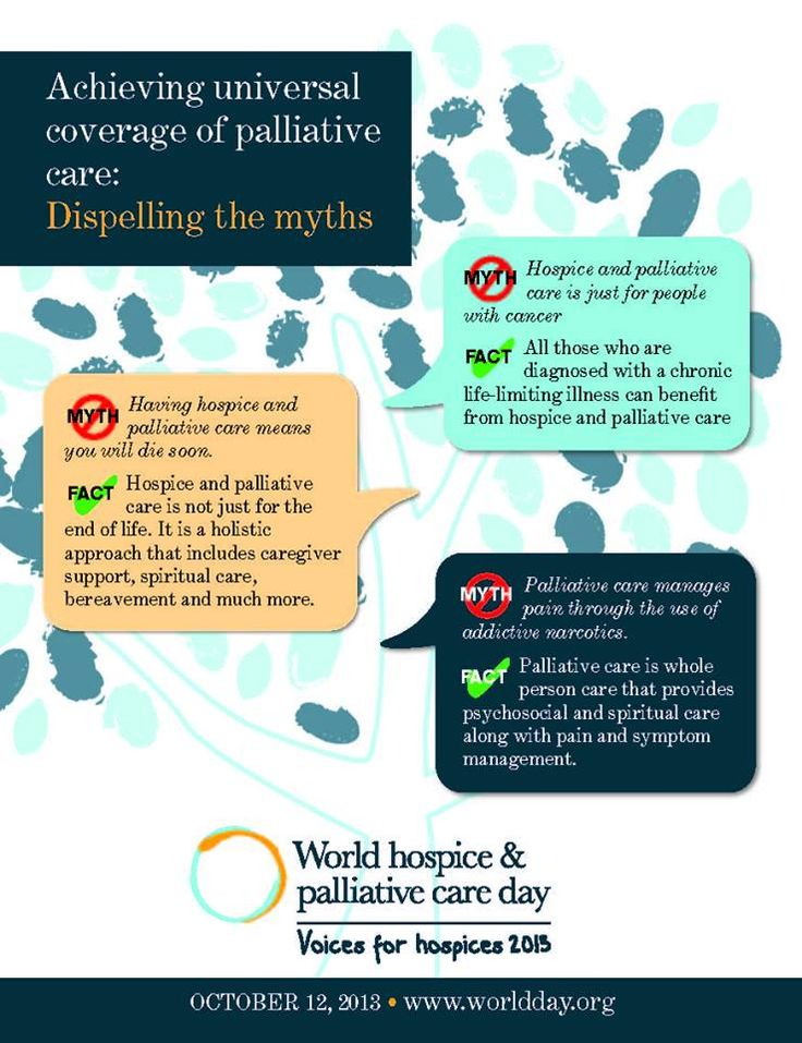 Current Status of Palliative Care, Education, and Research