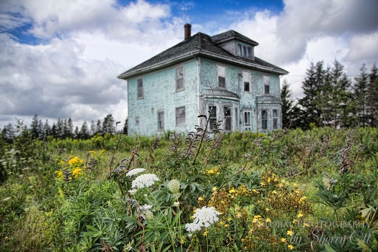 Abandoned house that reminded me of a scene from Poltergeist. Found on Prince Edward Island Canada – the weeds/flowers are a nice touch…  NO DIRECTIONS