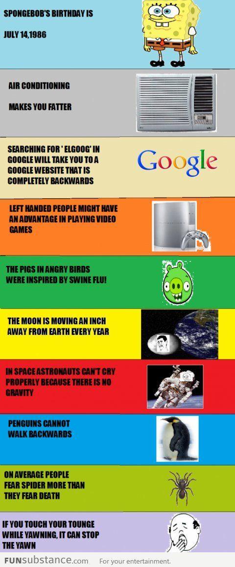 10 Random Facts