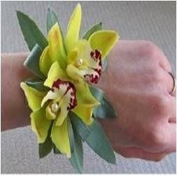B-13. Two cymbidium orchids