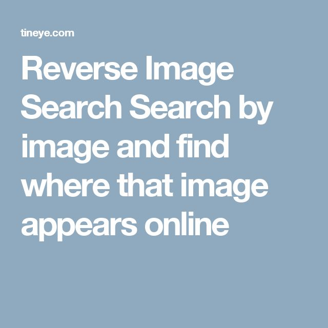 Reverse Image Search Search By Image And Find Where That Image