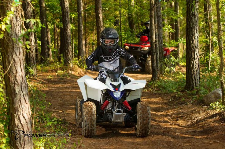 New 2016 Suzuki QuadSport Z90 ATVs For Sale in Florida. 2016 Suzuki QuadSport Z90, The Z90 is the ideal ATV for young riders to learn on. Convenient features like the automatic transmission and electric starter help make this ATV suitable for supervised riders ages 12 and up. Get your little ones started on the Quadsport Z90 so your whole family can experience Suzuki's Way of Life! 90cc, 4-stroke, air-cooled, single cylinder, OHC Automatic Chain, RK530, 60 links Front Suspension…