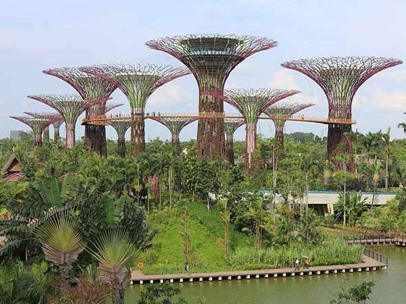 Jardins da Baía, em Singapura. Unindo natureza, arte e tecnologia, esse mega jardim vertical com árvores colossais 'movidas' a energia solar. Gardens By The Bay, o centro de ecoturismo ... – um conjunto de arvores artificiais de até 50 metros de altura. Espalhadas pelo parque, as 12 árvores possuem dutos de ventilação de ar para estufas próximas, sistema de aproveitamento da água das chuvas e placas fotovoltaicas