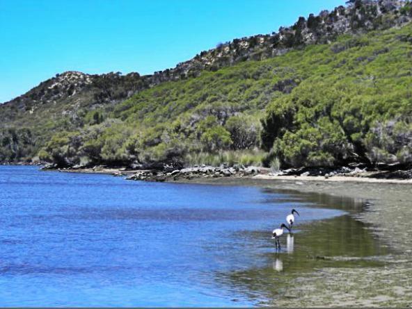 Moore River, Perth, Australia