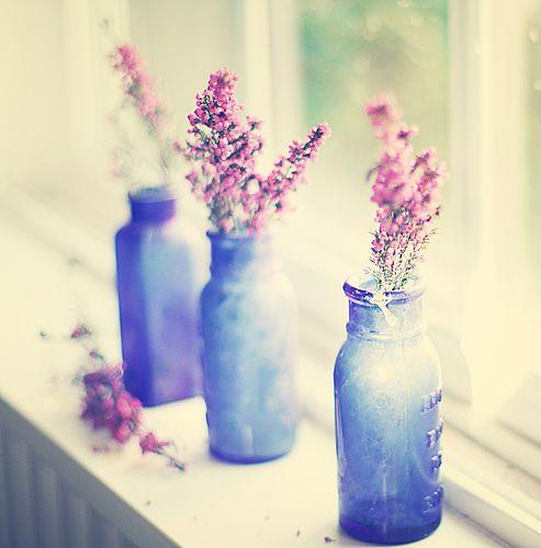Little blue bottles on the windowsill