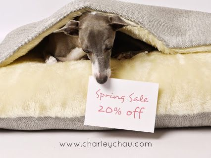 The Charley Chau Spring Sale is now on with 20% off selected luxury dog beds and blankets! www.charleychau.com