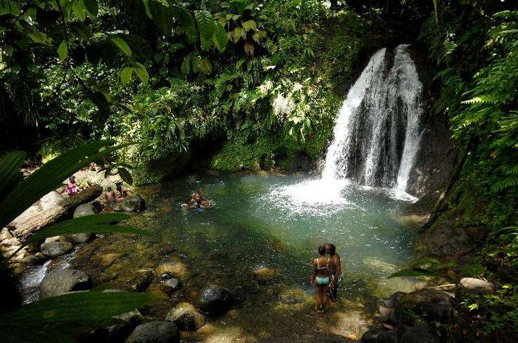 Bassin de la cascade aux écrevisses, Basse Terre, Guadeloupe ®PassionTerre #VoyagesPassionTerre