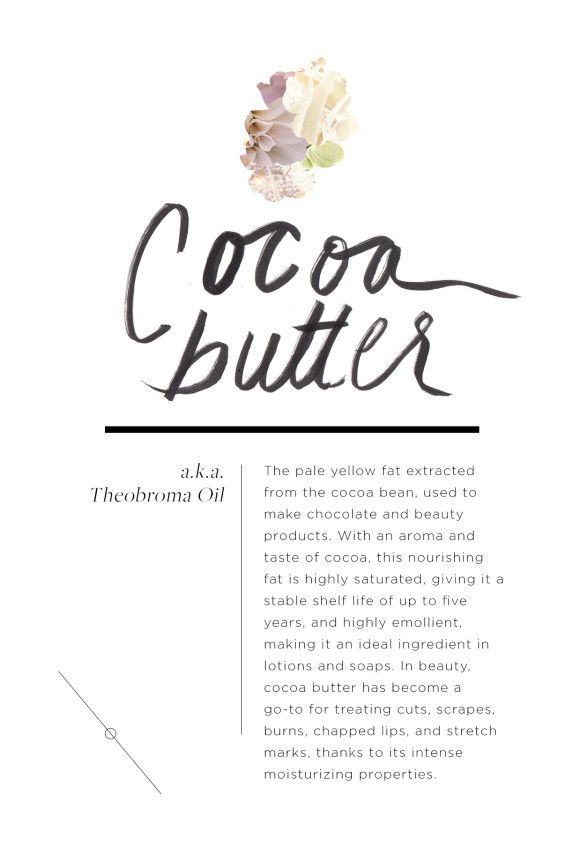Post image for Wellness Encyclopedia: Crazy About Cocoa Butter + An Easy Whipped Body Butter DIY