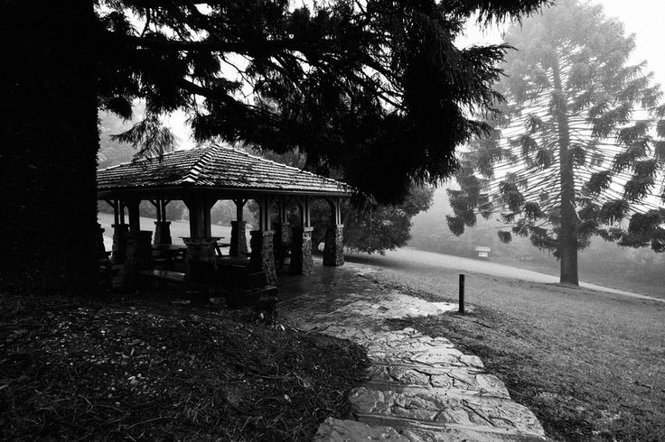 Maiala picnic ground in the freezing rain and fog. Ever since moving to Mount Glorious I've wanted to capture the magic as the cloud sets in. I got completely soaked taking this photo but I believe it was worth it.
