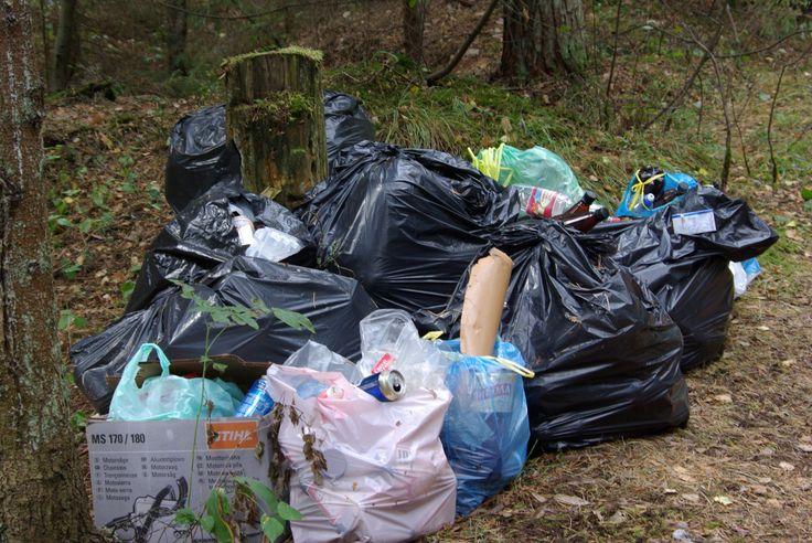 """Наша экологическая миссия """"Чистый лес - чистый берег"""". Вывоз мусора командой кемпинга """"Серебряное озеро"""""""