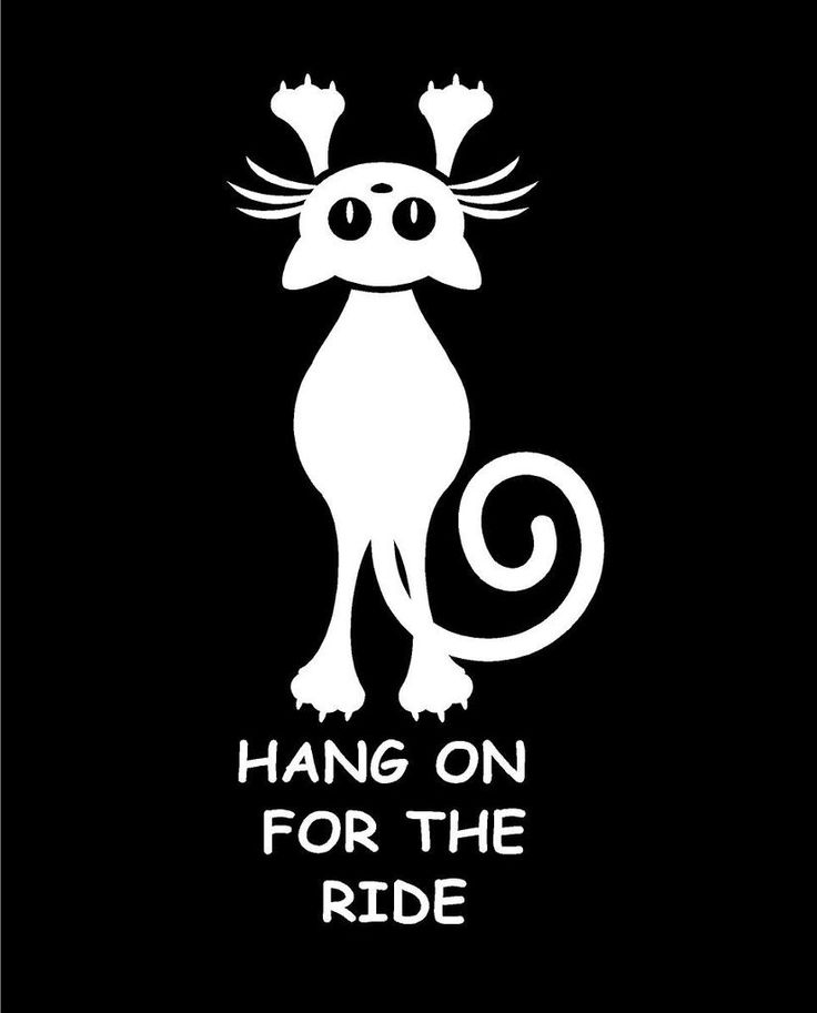 Hang on for the Ride Cat Decal Custom Vinyl car truck