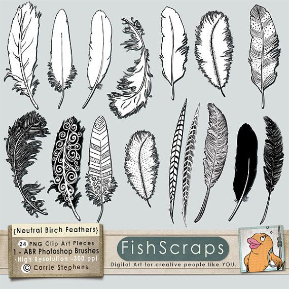 Feather Doodle Clip Art - Silhouettes & Outlines - Photoshop Brushes - PNG Digital Stamps - Hand Drawn Feather ClipArt - Instant Download