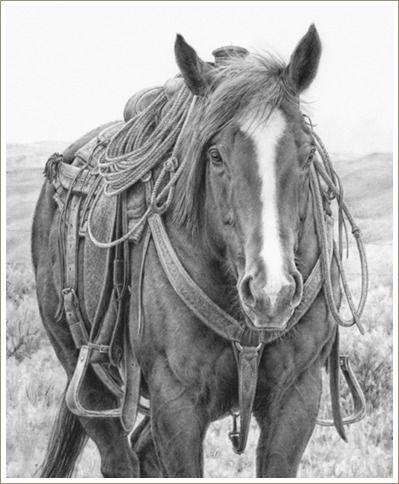 western artAnnette Randall, Westerns Hors Art, Cowboy Pencil Art, Westerns Art, Art Of Hors, Pencil Drawing, Horses Drawing, Drawing Of Hors, Drawing Hors