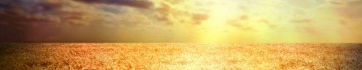 GF sunblock