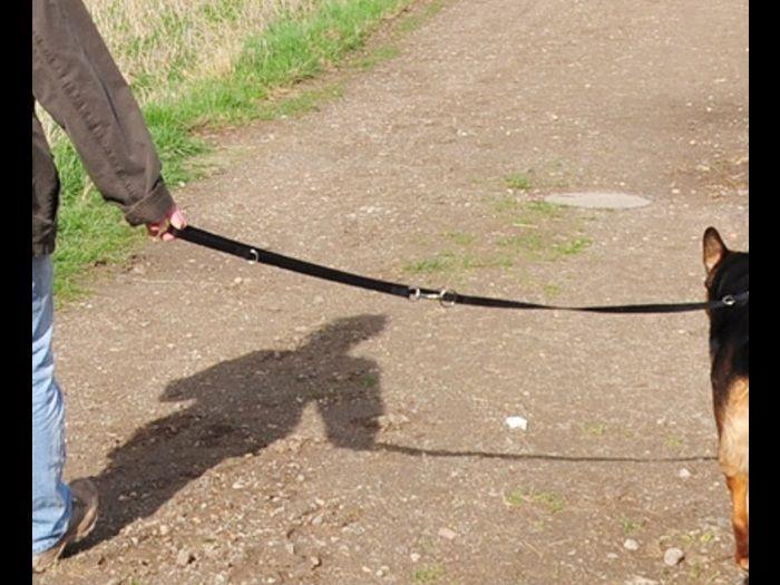 #Hundebesitzer sollen bei ihrem #Gassi #Gang  auf der Hut sein...