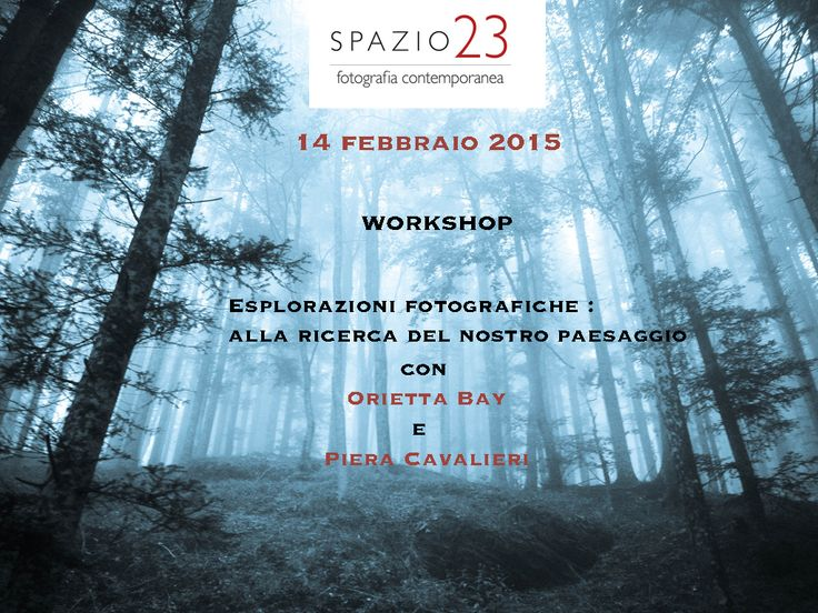 workshop 14 febbraio 2015